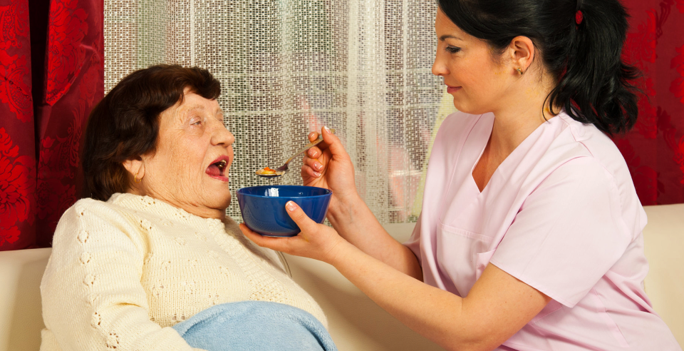 Caregiver Feeding Elderly